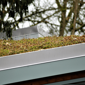 Green Roofing Products
